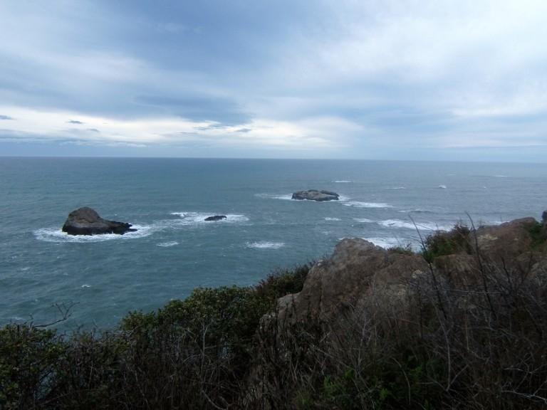 N CA coast 06 016