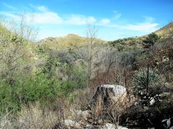 Florida Canyon039